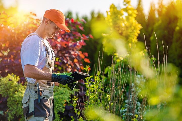 prix d'un jardinier